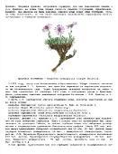 """Подшивка журнала """"Домашняя лаборатория"""". 57 номеров (2006-август/2011) DjVu"""