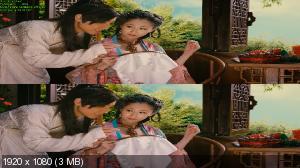 Секс и Дзен: Экстремальный экстаз 3Д / 3D rou pu tuan zhi ji le bao jian [Театральная версия / Theatrical Cut]  Вертикальная анаморфная