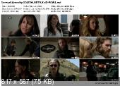 Sons of Anarchy [S04E06] HDTV XviD