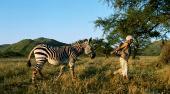 Волшебное путешествие в Африку / Magic Journey to Africa (HDRip/1.37)