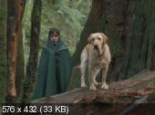 ����� �� ����: ����������� ������� ��� / Far from Home: The Adventures of Yellow Dog (1995) DVDRip