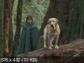 Вдали от дома: Приключения желтого пса / Far from Home: The Adventures of Yellow Dog (1995) DVDRip