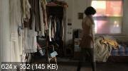 Будущее / The Future (2011) DVDRip