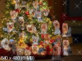 http://i28.fastpic.ru/thumb/2012/0101/06/_52b0942cf9641c532bce32bdbad93206.jpeg
