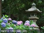 Обои с видами Японии от 1024х768 до 2560х1600