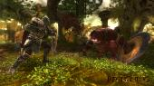 Kingdoms of Amalur: Reckoning (2012/ENG/Origin-Rip)