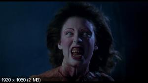 Зловещие мертвецы 2 / Evil Dead II (1987) BDRip 720p + HDRip 1400 Mb