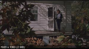 ���� ���������� / The Amityville Horror (1979) BD Remux