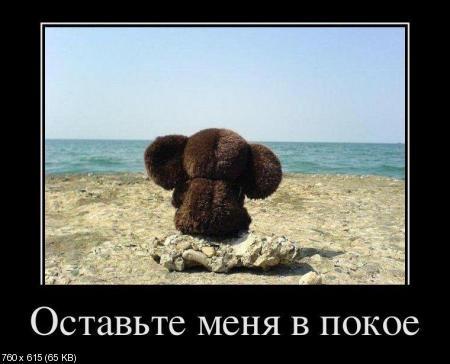 Свежая подборка демотиваторов от 16.02.2012