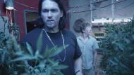 Бесстыжие / Shameless (2 сезон/2012/HDTVRip)