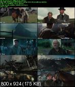 Czas Wojny / War Horse (2011) BRRip.XviD-BiDA / Napisy PL