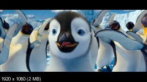 Делай ноги 2 / Happy Feet Two (2011) BluRay [3D/2D] + BD Remux + BDRip 1080p / 720p + HDRip 1400/700 Mb